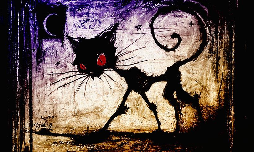 Охота на «Чёрную кошку»